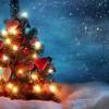 Новогодние традиции разных стран мира » Интересные факты ...: http://billionnews.ru/naci/895-novogodnie-tradicii-raznyx-stran-mira.html