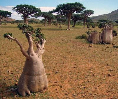 Самые экзотические места на земле