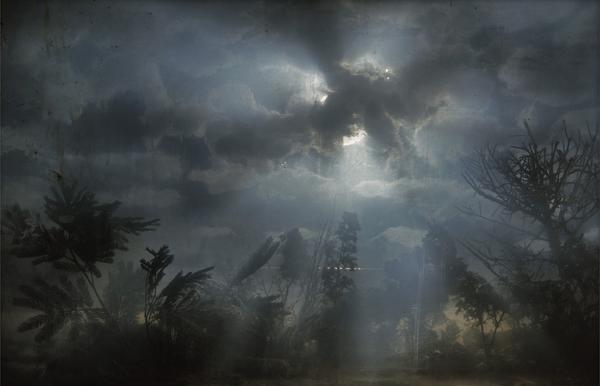 Аквариумные пейзажи Кима Кивера (12 фото)