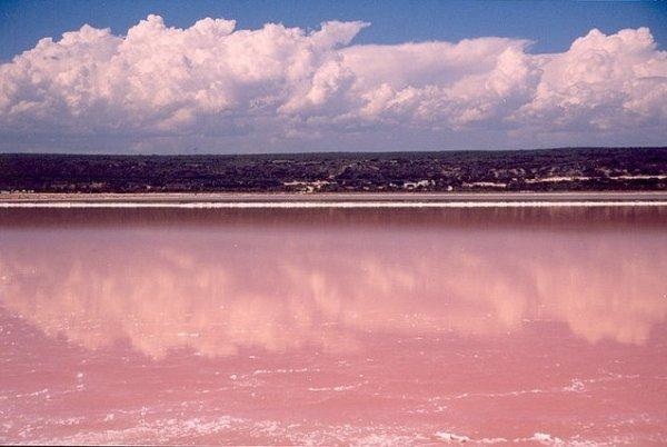 Розовое озеро на острове Миддл (10 фото)