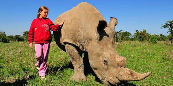 У девочки из Кении домашнее животное – дикий носорог