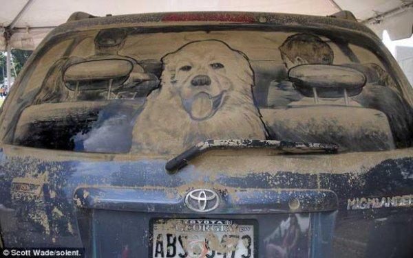 Удивительное грязевое искусство на окнах (9 фото)