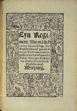 В 16-м веке половина населения Европы умерла от таинственного «Английского пота»