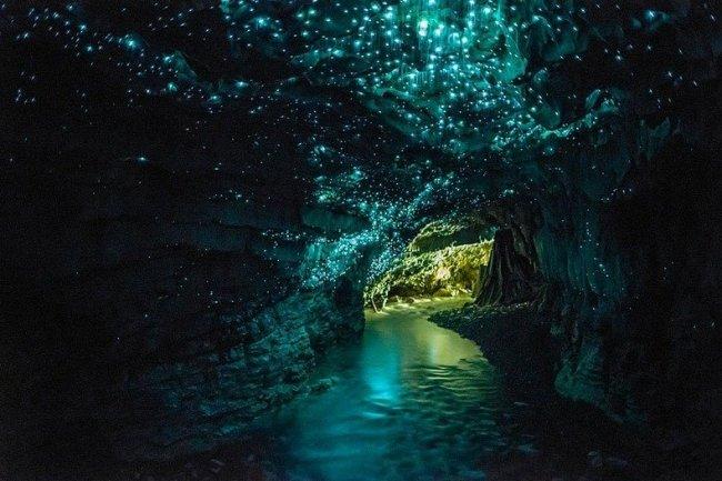 Новозеландські печери світлячків