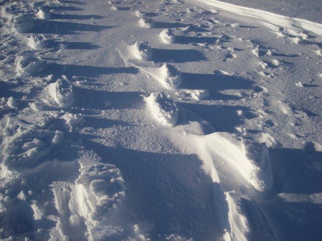 Следы на снегу навыворот