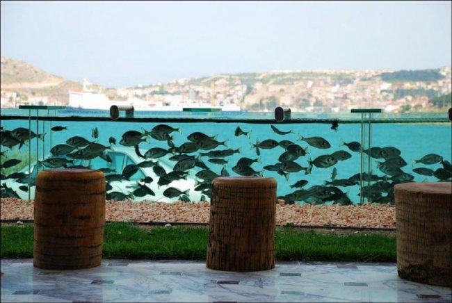 Забор - аквариум из Турции (4 фото + видео)