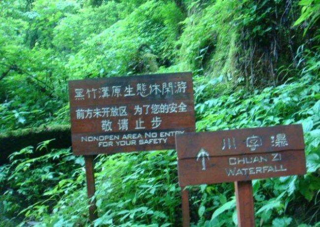 Лощина чёрного бамбука (4 фото)