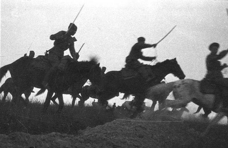 Виды кавалерии  антикотлер
