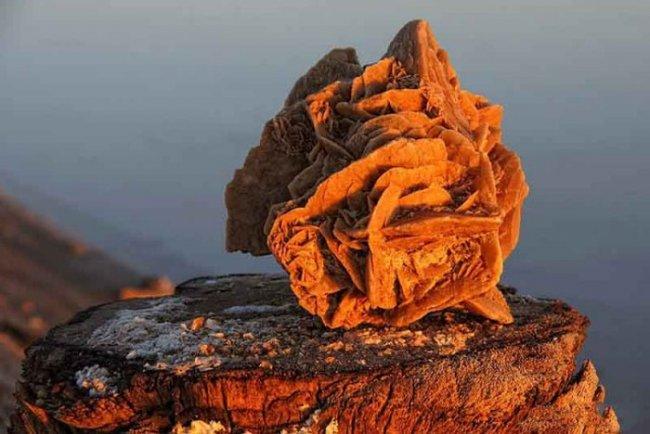 Необычный минерал «роза пустыни» (11 фото)