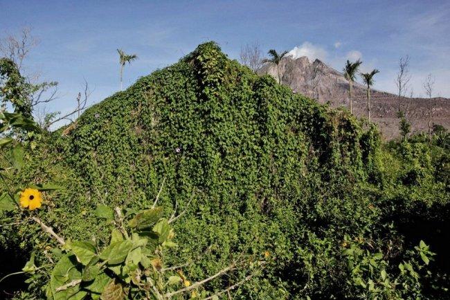 Деревни, выгоревшие после извержения вулкана (11 фото)