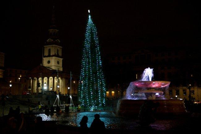 Новогодние елки в разных городах мира (22 фото)