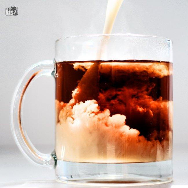 Интересные факты о чае (10 фото)