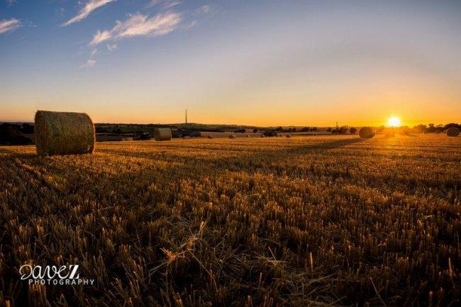 Пейзажный фотограф Дэйв Зданович (27 фото)
