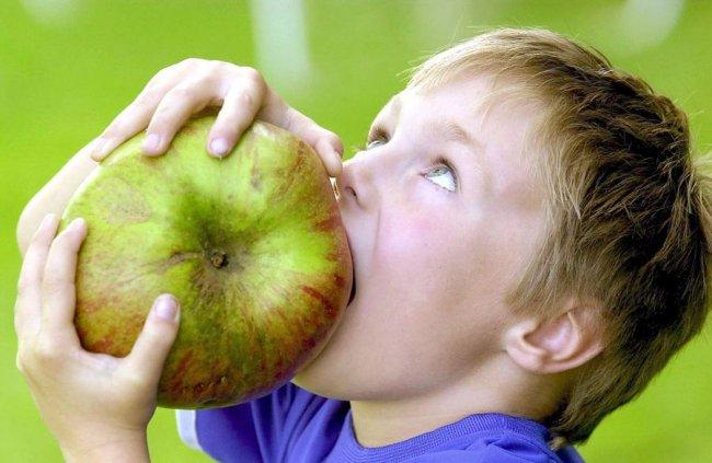Фото самое большое яблоко