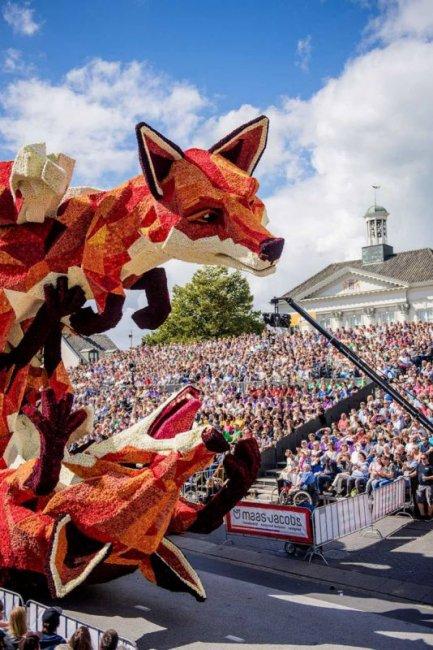 Корсо Зюндерт 2016 - парад цветов в Нидерландах (11 фото)