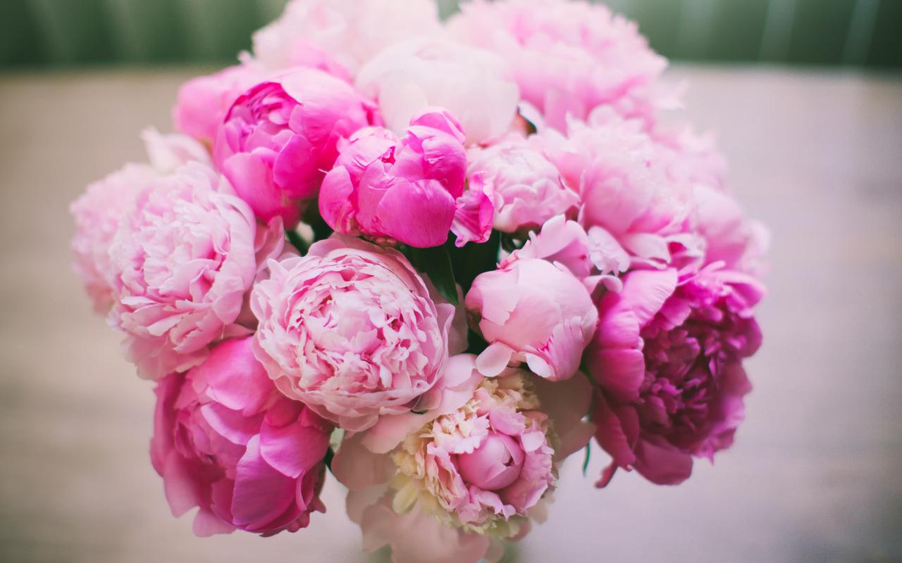 Пионы свадебный букет значение продажа цветов