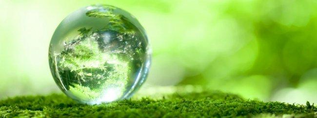 Что такое экологический консалтинг и зачем он нужен?