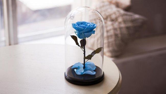 Цветы в вакууме на 5 лет - технология
