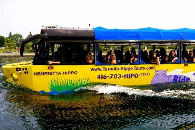 Необычный транспорт мира (10 фото)