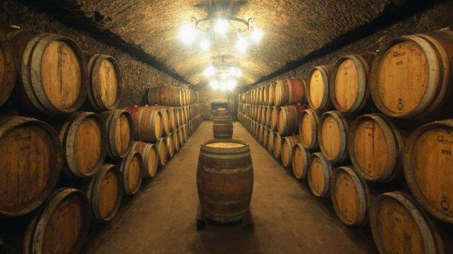 9 интересных фактов о виноделии