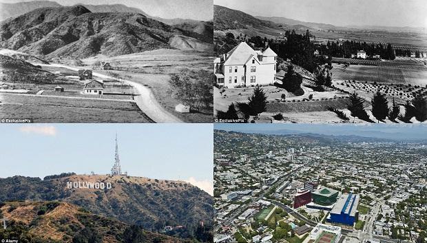 Интересные факты о Голливуде (16 фото)