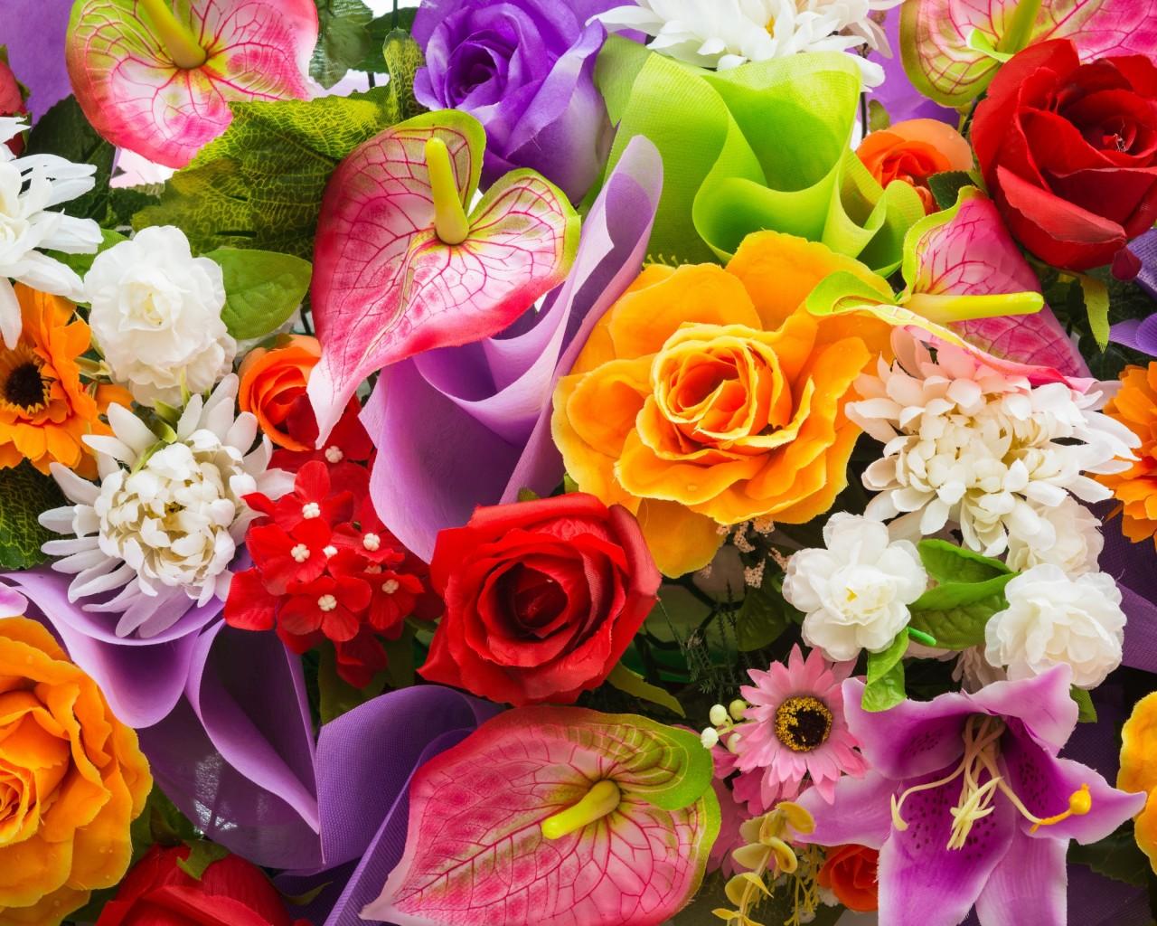 Цветы мира контакты