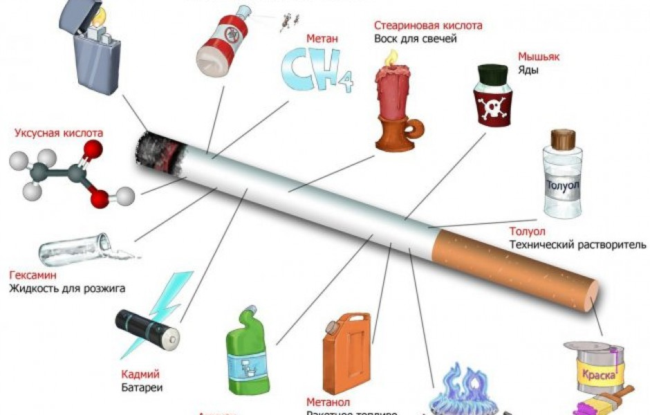 Еще раз о вреде курения!!! » Интересные факты: самое невероятное и любопытное в мире