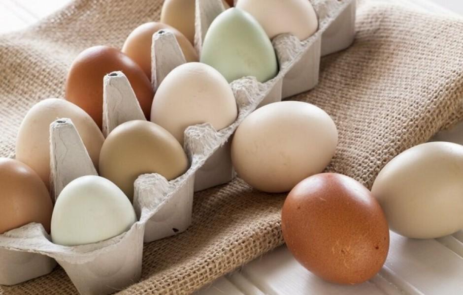Какие яйца вкуснее: белые или коричневые?
