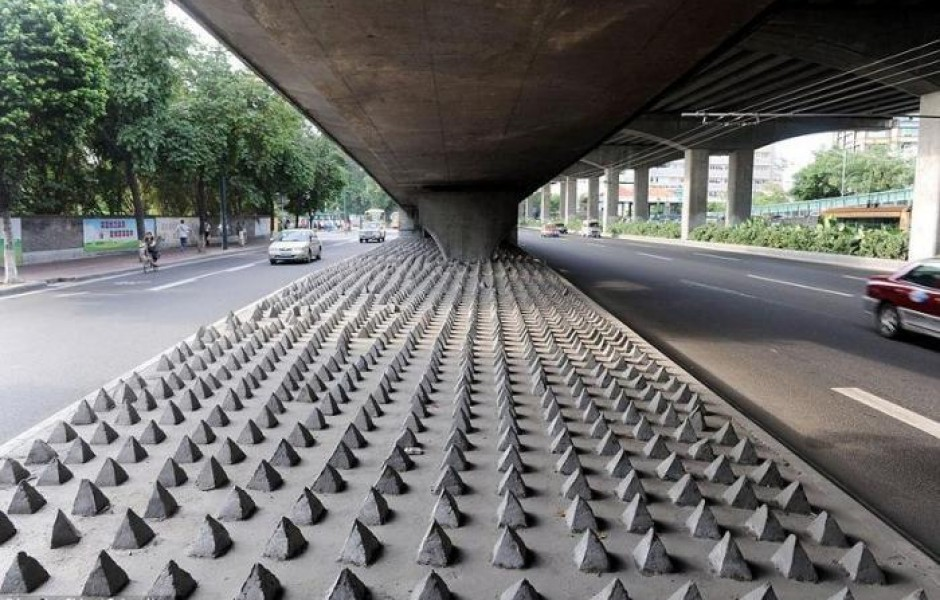 Шипы против бездомных (4 фото)