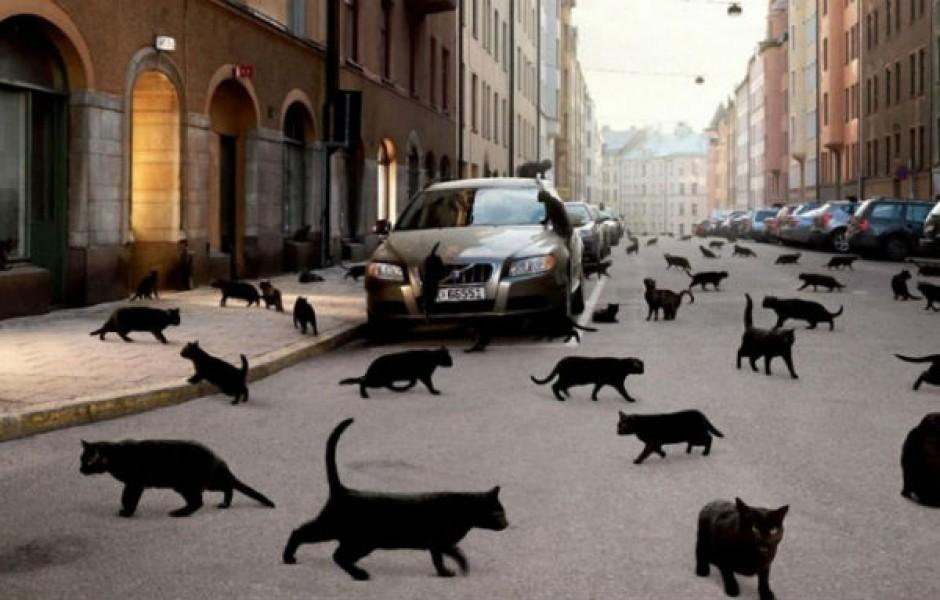 Необычные суеверия со всего мира