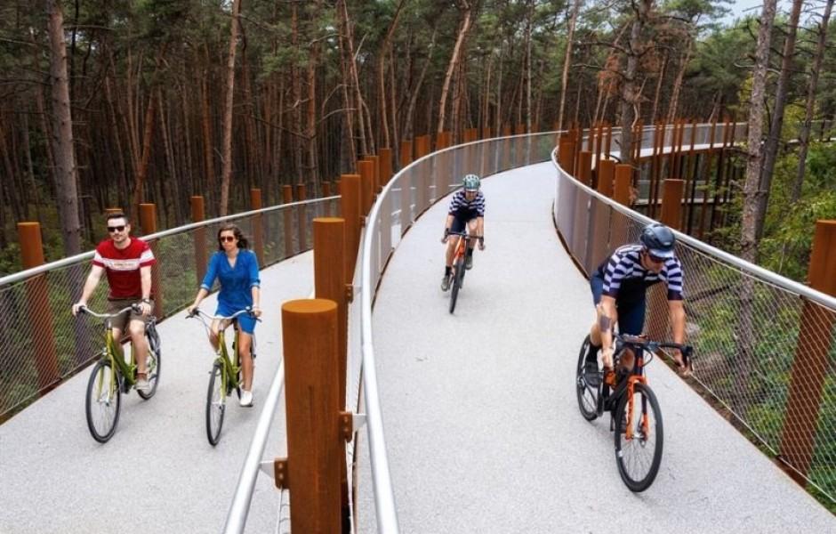 В Бельгии построили обзорную велосипедную дорожку, пролегающую сквозь кроны деревьев (6 фото)