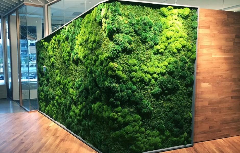 Натуральный растительный декор в интерьере (8 фото)