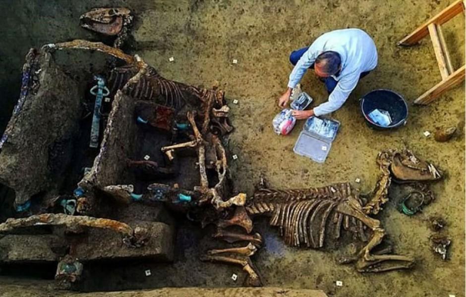 В Хорватии при раскопках нашли римскую колесницу с лошадьми