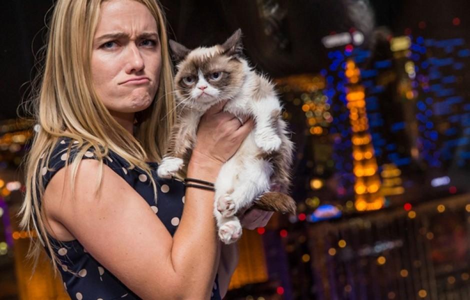 История успеха самого богатого «грустного» кота в мире