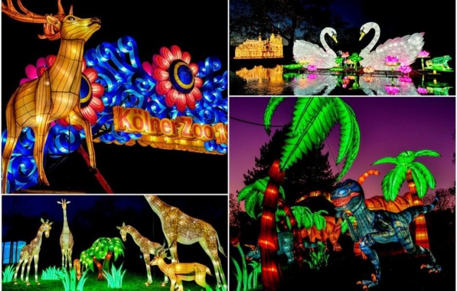 Фестиваль света в Кельнском зоопарке