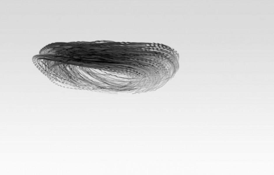 Если бы птицы оставляли в небе следы (8 фото)