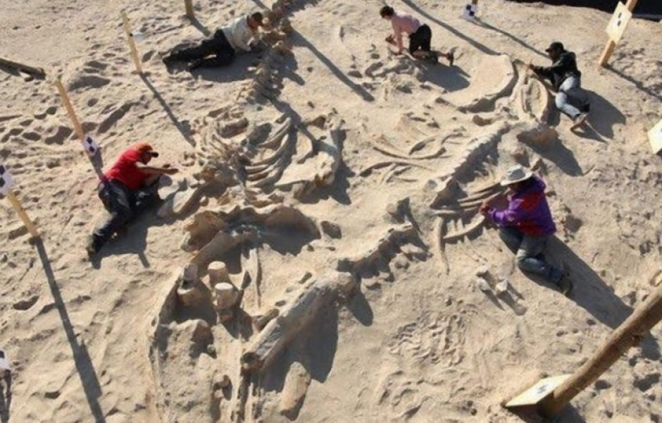 Находки археологов из пустыни, которые озадачили ученых
