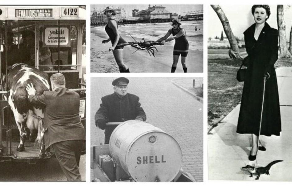 20 фото, показывающих  каким странным мир был раньше (21 фото)