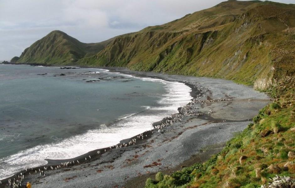 Остров Маккуори— место, где мантия Земли расположена над водой