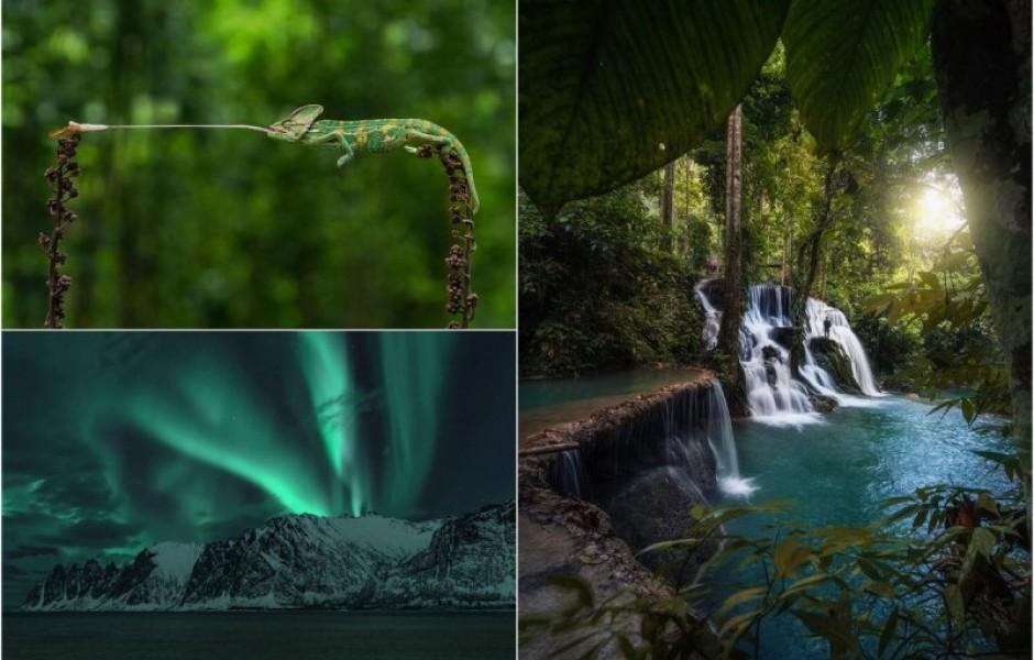 Лучшие работы конкурса #Nature2020 (30 фото)