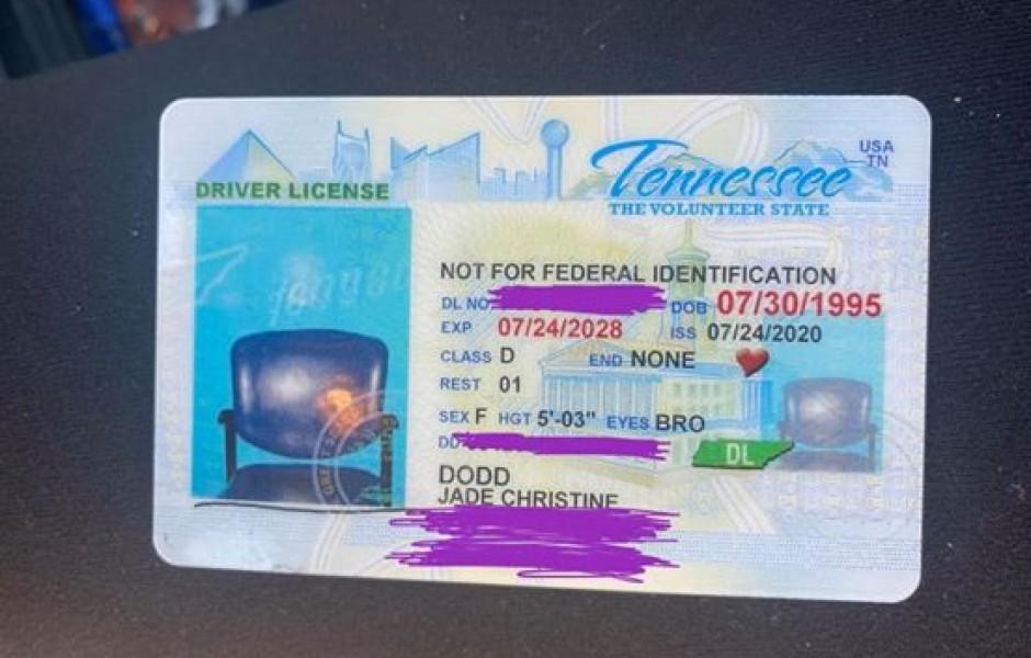 Американке выдали водительские права с фотографией стула
