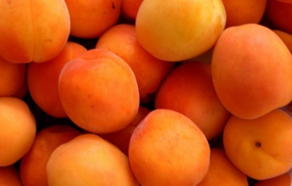 Топ-10: Плоды, которые когда-то были совсем не такими, какими мы их знаем сегодня
