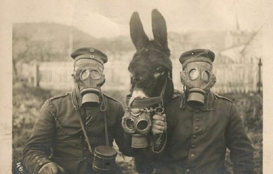 Редкие исторические фото, которые дают представление о мире в ХХ веке