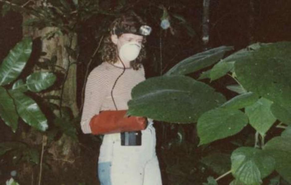 Адское растение — жжет в сотни раз сильнее крапивы, даже когда засохнет