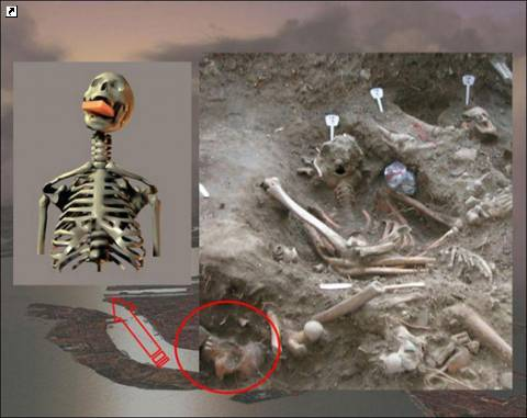 Скелет женщины-вампира