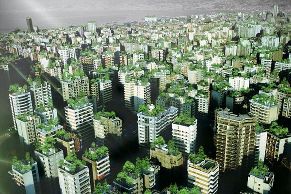 Висячие сады Бейрута (5 фото)