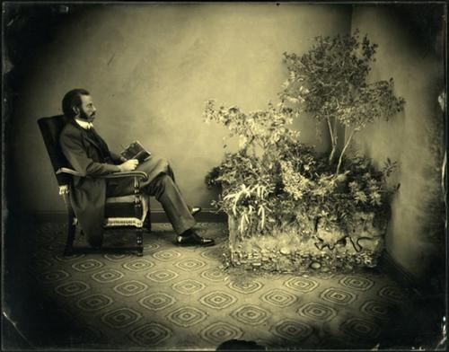 Псевдоистория от Noah Doely (10 фото)