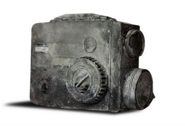 Будущие ископаемые (9 фото)