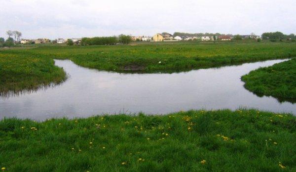 Реки Велна и Нельба пересекаются под прямым углом и не смешиваются (3 фото)