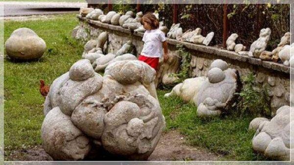 Живые камни, которые растут и размножаются (5 фото)